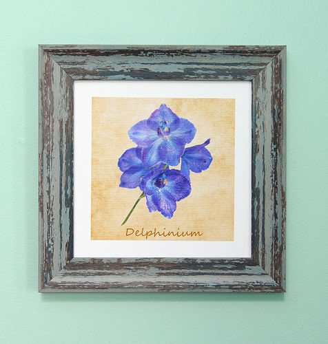 "Irish Garden Flowers Delphinium Art Frame 9""x 9"""